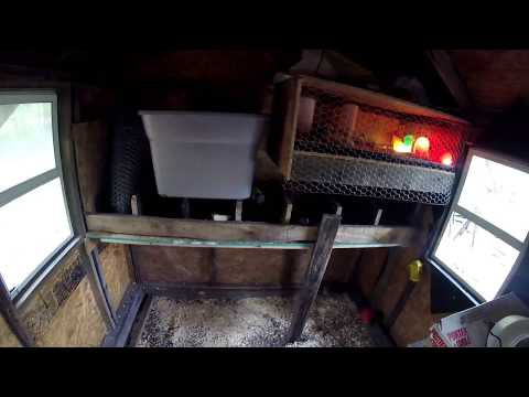 Building Chicken Nesting Boxes & Chick Brooder In Coop