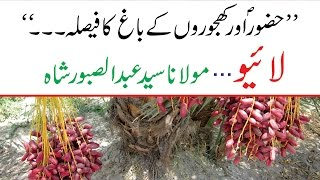 Hazoor S.A.W.W Or Khajoor K Baagh Ka Faisla - حضور ﷺ اور کھجور کے باغ کا فیصلہ