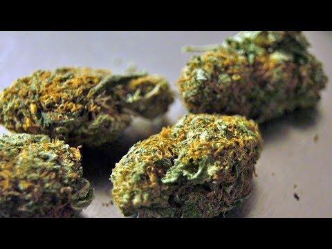 Voters may get the final say in the medical marijuana debate