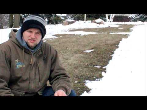 Tips to Help Birds Survive Cold Spring Weather