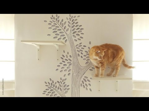 How to Make a Cat Wall Tree