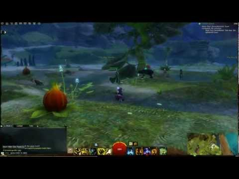 Guild Wars 2 - Jumping Puzzle - Caledon Forest (Morgan's Leap)