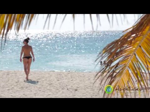 Samana Tour by Plane from Punta Cana, Aventuras Dominican Excursions