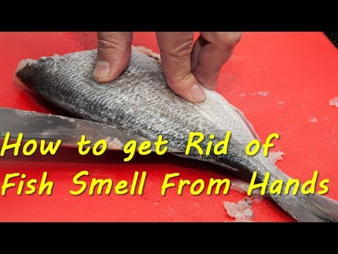 Top Tips- 3 Ways to Get Rid Of Fish Smell From Hands