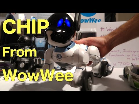 CHIP Robotic Dog from WowWee, Early Preview.  This is Something!