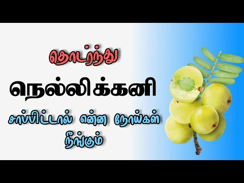 நெல்லிக்கனியின் மருத்துவ குணங்கள் | Medicinal uses of phylanthus emblica | Nellikkaay maruthuvam