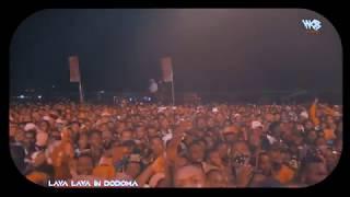 Lava Lava TEJA Live Performance In DODOMA
