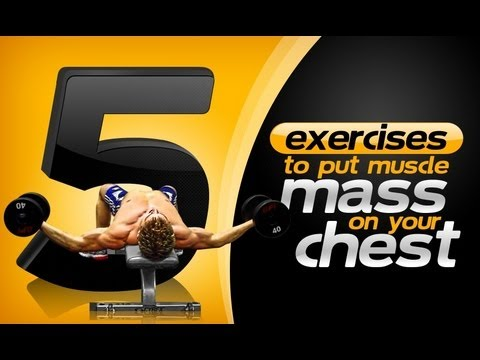 5 Exercises To Put Muscle Mass On Your Chest!