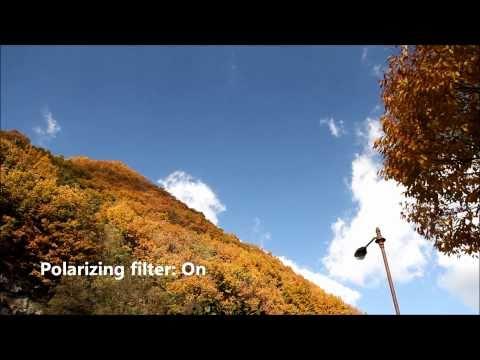 Polarizing Filter Canon 60D Demo (Hoya)