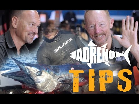 How to Hunt Wahoo | ADRENO Spearfishing Tips