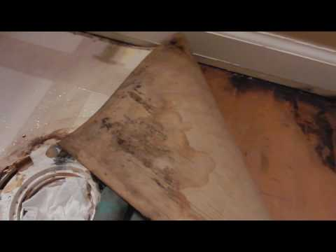 3. Discovering mold and cleaning it up