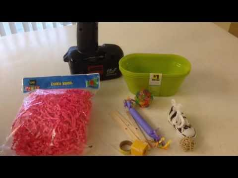 Dollar Store: Foraging Parrot Toy