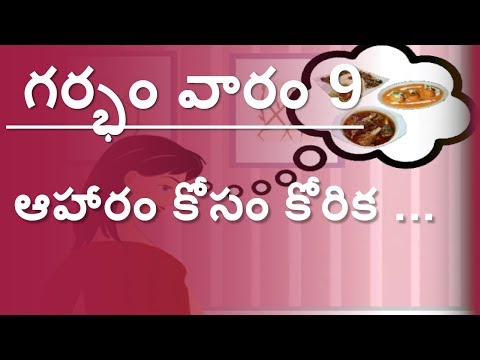 The Pregnancy   Telugu   Week by Week   Week 9