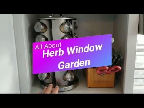 All About: Windowsill Herb Garden Kit
