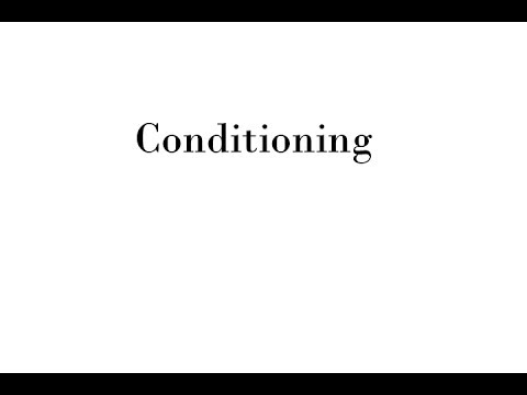 Fur Coat Conditioning and Glazing | Mano Swartz Baltimore MD