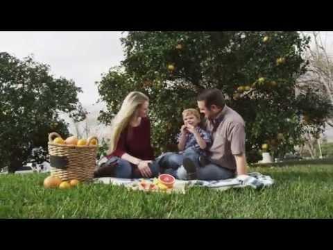 Citrus Greening Disease in South Texas