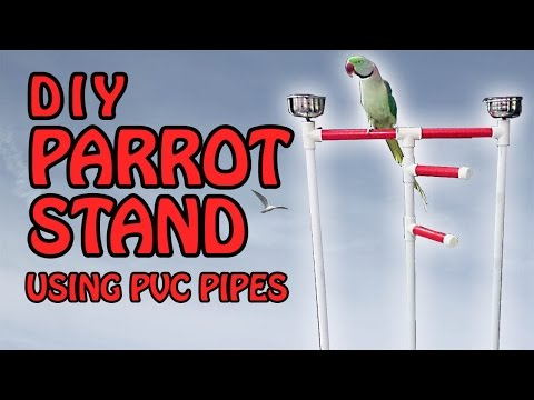 DIY Parrot Stand | How to build a Bird Perch Stand using PVC Pipes | Video in English