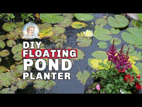 Make a Floating Pond Planter