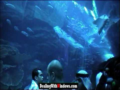Dubai Mall Water Equarium
