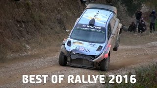 Best Of Rallye 2016 (Jumps, Show & Mistakes)