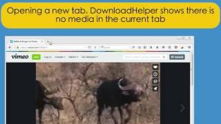 download-helper-companion-app Videos - Videos Run Online
