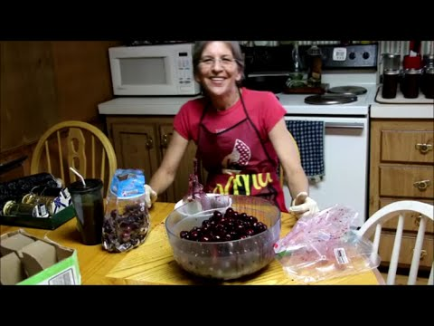How Bexar Pits for Canning Cherries