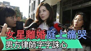【精華版】女星何如芸離婚庭上痛哭 男方律師字字誅心見血