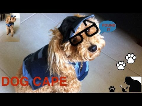 EASY SEW DOG CAPE - DIY Dog clothes  - a tutorial by Cooking For Dogs