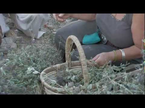 Kuumba Made - Body Botanicals with Pure Intention