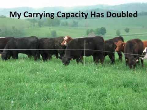 Using Grazing Strategies to Improve Soil Health on My Farm