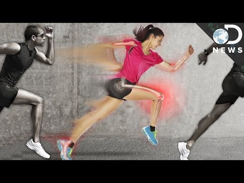Why Your Body Is Built To Run Long Distances