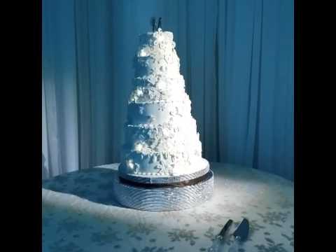 Winter Wonderland Spinning Cake with Lights!