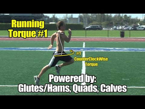 Athletic Muscle Torque #1 – Triple extension - Powered by Glutes/Hams, Quads, Calves