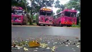 The Dam Rjini Bus.