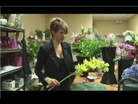 Bridal Bouquet Ideas : Single Stem Bouquet Ideas