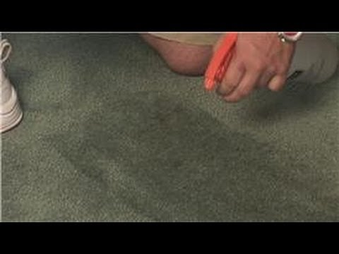Carpet Cleaning : How to Clean Carpet and Remove Stains