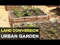 Urban Gardening in the Philippines : land conversion | Agribusiness