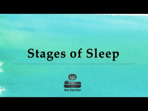 Stages of Sleep - Sleep Cycles