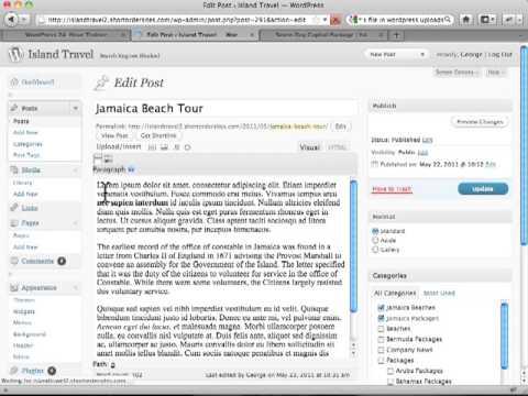 How to Use Quick Edit in Wordpress Post - Wordpress Tutorials