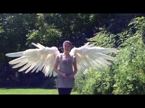 Erzi Pneumatic Wings 2013 demo - Articulated WINGS