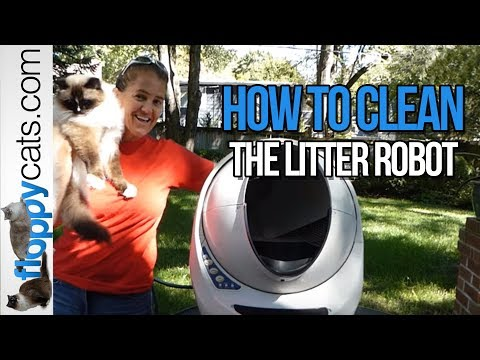 How to Clean the Litter Robot Open Air Automatic Litter Box -- ねこ - ラグドール - = ネコ - Floppycats