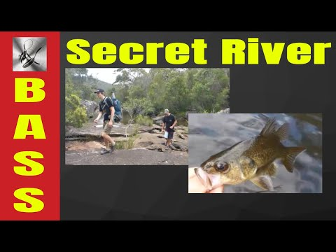 Secret River Bass | The Hook and The Cook