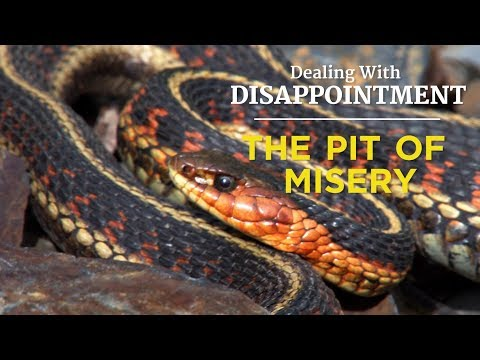 Dealing With Disappointment: The Pit of Misery