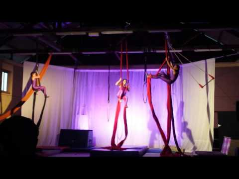 Aerial Silk Tissu Circus show