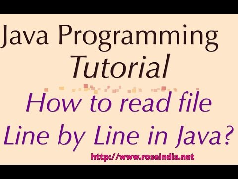 How to read file Line by Line in Java?