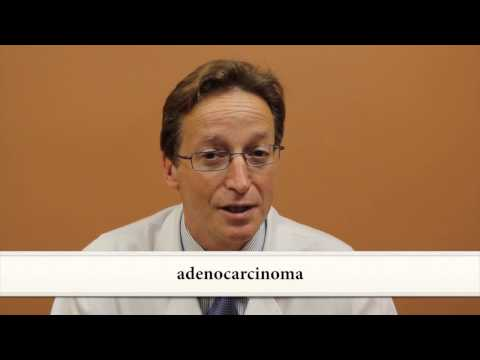 Lung Cancer:  Symptoms, Diagnosis and Staging - Joshua R. Sonett, MD