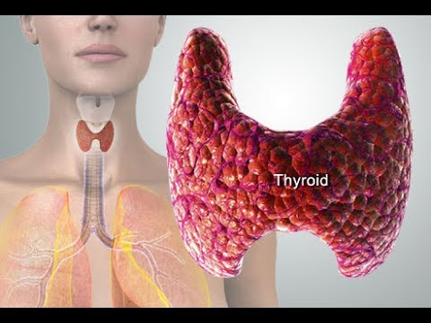 HEAL THYROID SUBLIMINAL EXTREMELY POWERFUL AND VERY FAST RESULTS