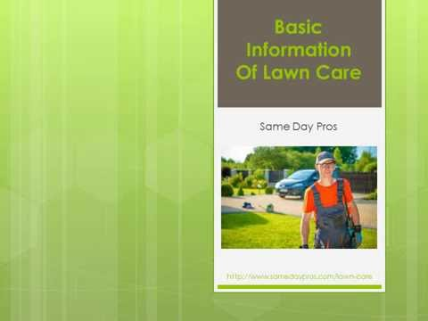 Basic Information of Lawn Care