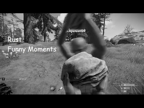Funny Moments in Rust #1