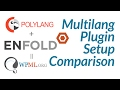WordPress Multilanguage setup comparing WPML and Polylang on Enfold theme